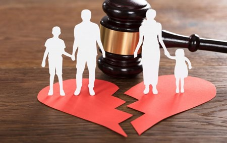 Civil Law and Family Law (part 2)